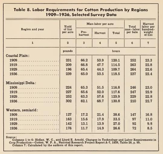 cotton hand pick labor